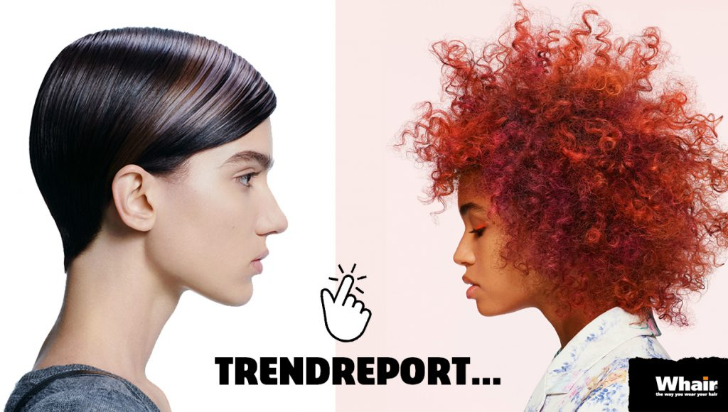 Whair Kappers Trend Report ESSENTIAL Looks